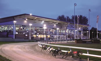 Night At The Races in Drumbo Park